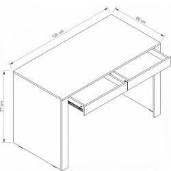 ARIZONA RRB-1 íróasztal, 120*60*76,7 cm