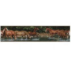 Wild Horses bordűr