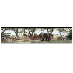Safari bordűr