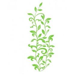 Leaf Scroll falmatrica