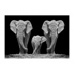 ELEPHANT FAMILY kép, 120*80 cm