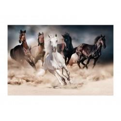 HORSES kép, 120*80 cm